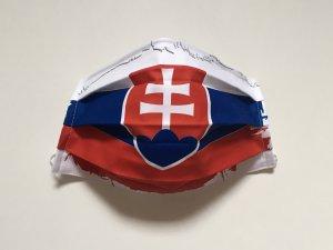 Rúško so slovenskou vlajkou (štetcový okraj)